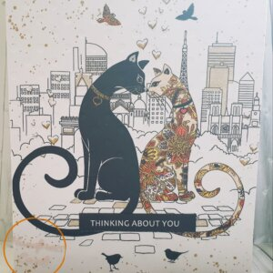 Two french cats greeting card